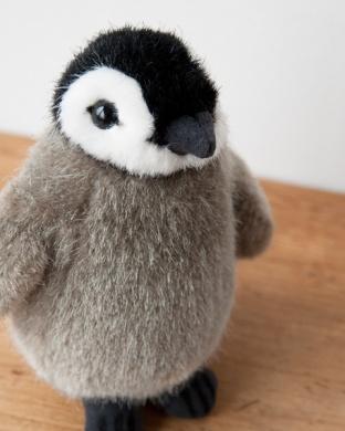 皇帝ペンギン